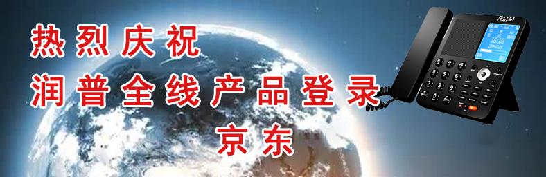 润普登陆电商平台